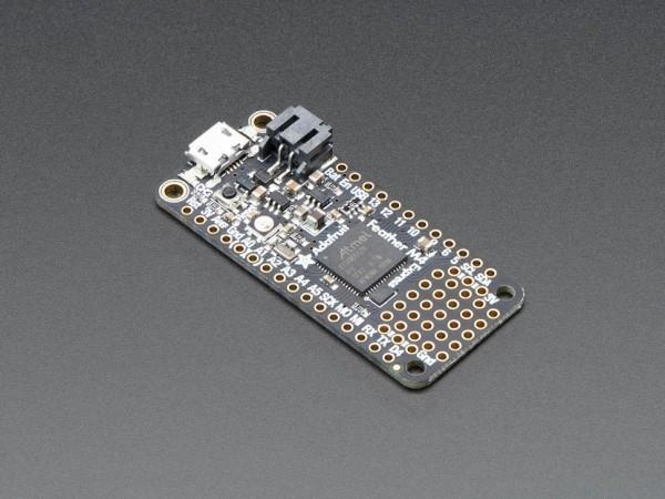 Adafruit-Feather-M4-Express-ATSAMD51_1_600x600.jpg