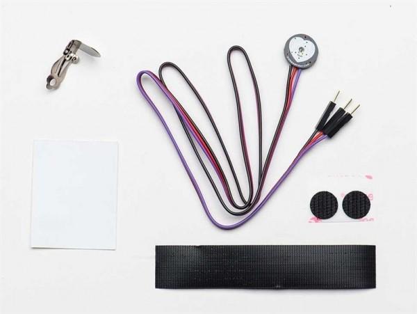 Pulse Sensor Amped